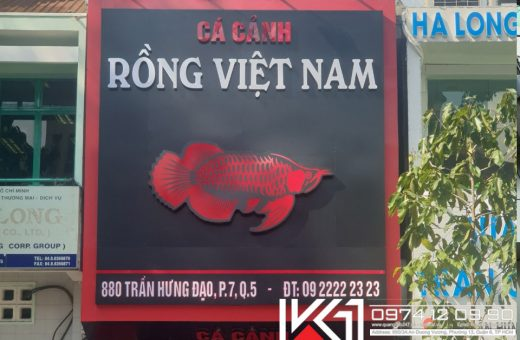 Mat Dung Alu Chu Noi Ca Canh Rong Viet Nam