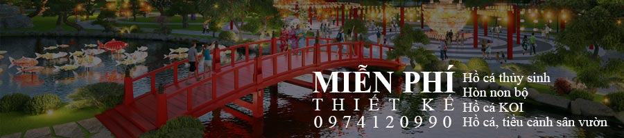 Thi Cong Thiet Ke Ho Ca Koi Thuy Sinh Tieu Canh Km